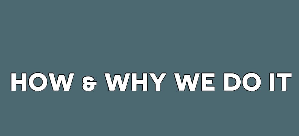 How & Why We Do Seo